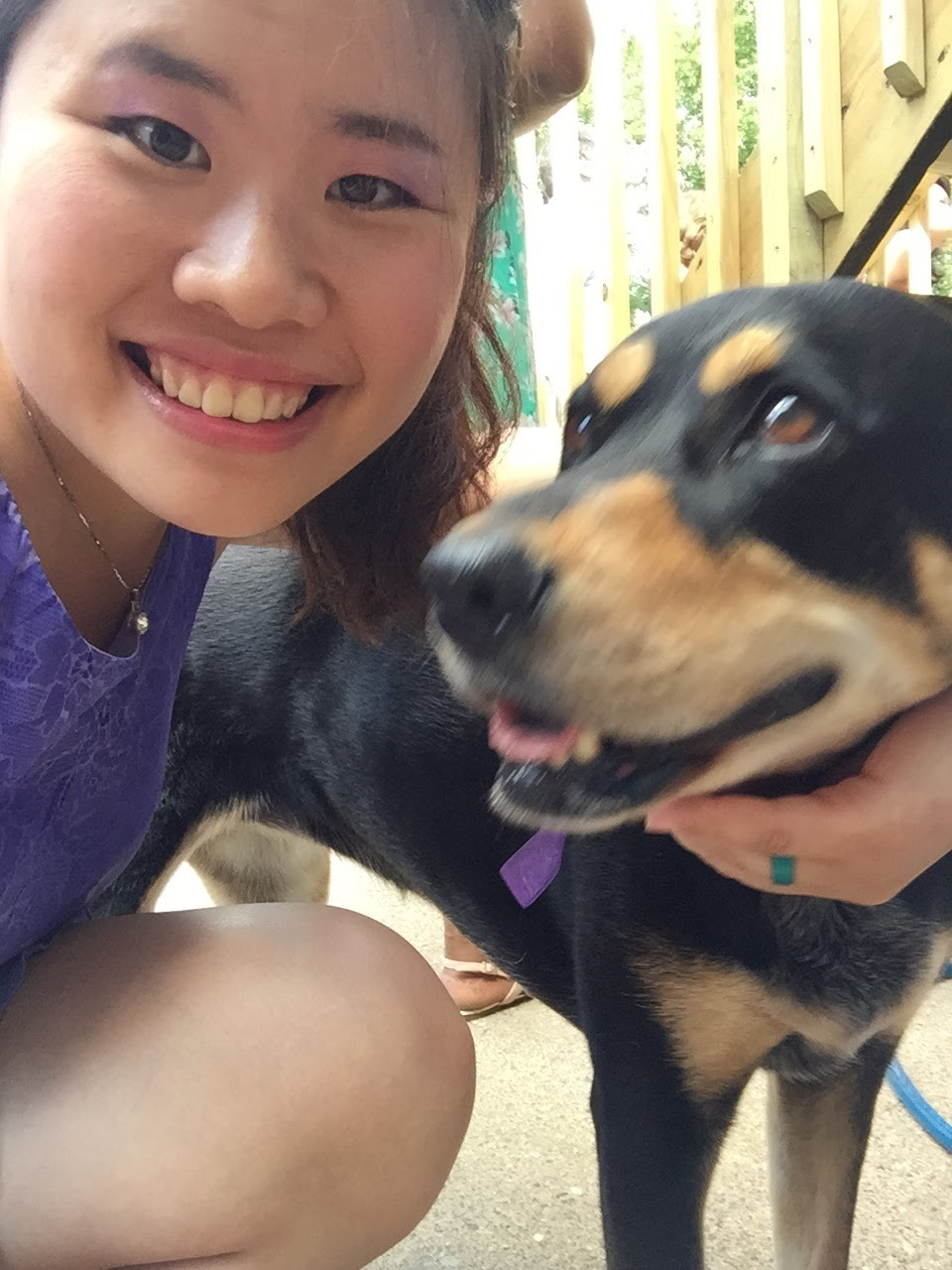 with doggy